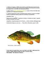 Como insertar imagenes en los post.pdf