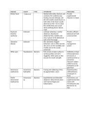 CATFISH DISEASE TREATMENT.doc